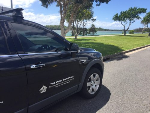 Pest Control Tweed Heads New South Wales